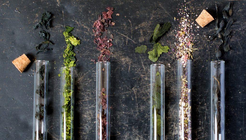 Gedroogde wieren micro-algen